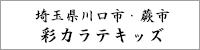 埼玉県蕨市 彩カラテキッズ